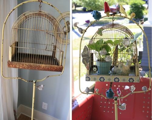 birdcage before and after