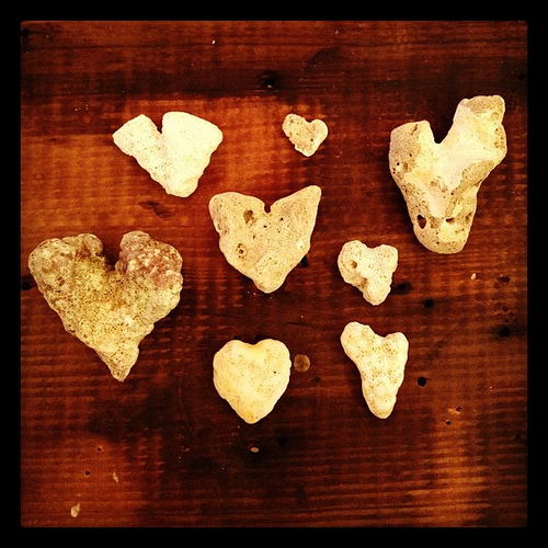 A few of the heart rocks found while on Maui