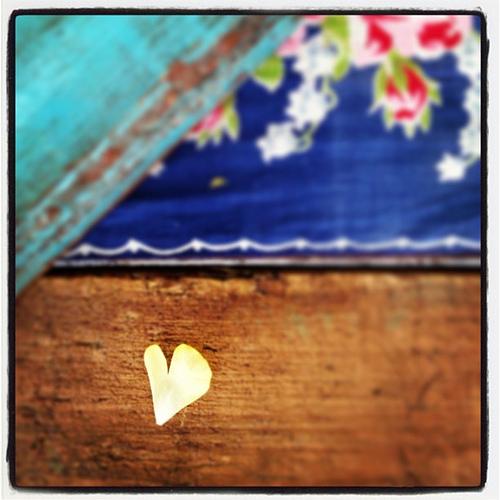 Petal #heart
