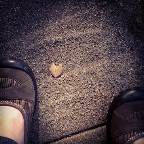 Tiniest little heart found on sidewalk. I'll take it;)