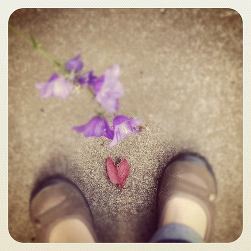 Heart found in morning walk. Love this one.