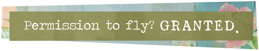 Permission to Fly? GRANTED.